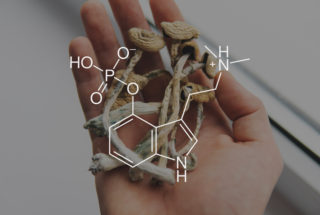 Psilocybin treats depression