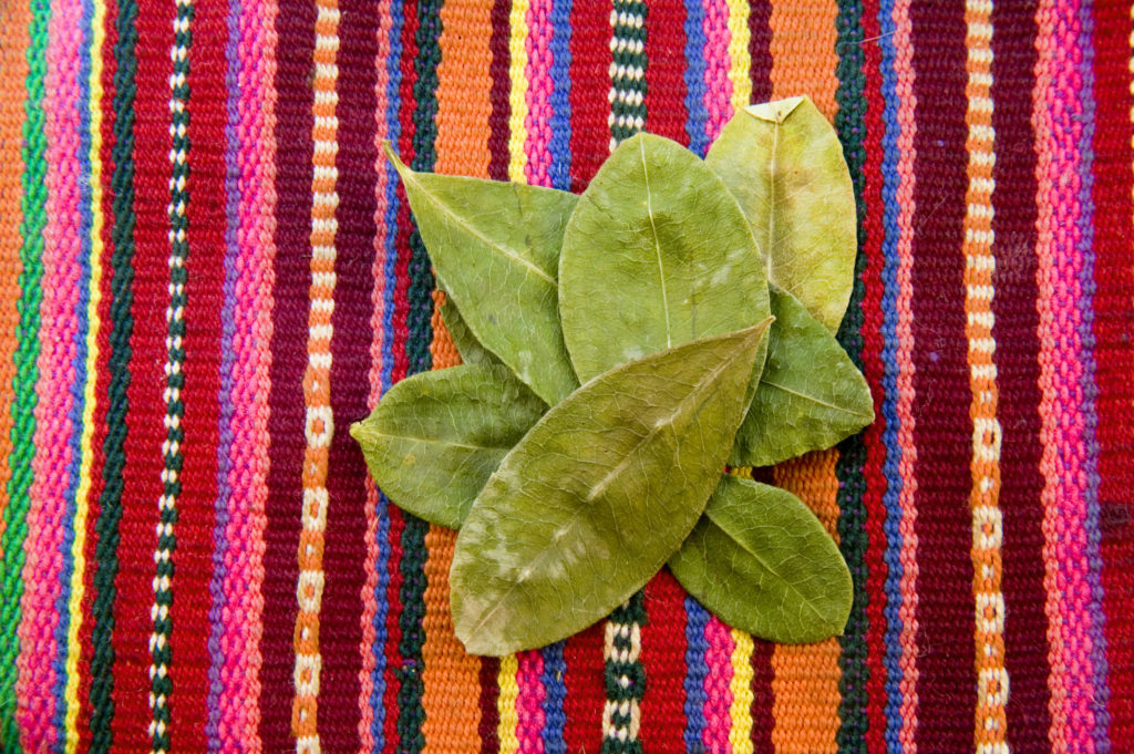 Coca leaves: an indigenous medicine