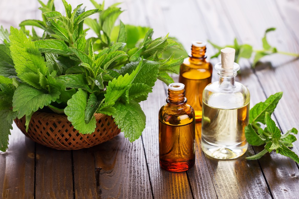 Peppermint can help ease gum inflammation and certain skin conditions. Via: Antonova Anna | Shutterstock
