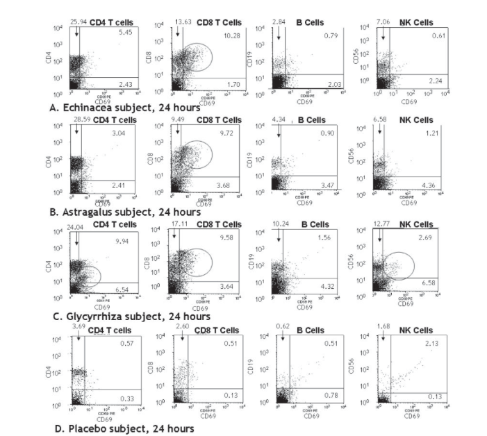 Image: Subjects taking single herb tinctures of echinacea, astragalus or glycyrrhiza show immune cell activation at 24 hours as seen on dot plots. Via: Phytotherapy Research.