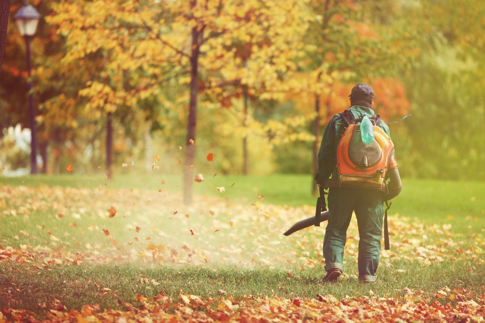 Noise pollution, such as that emitted by leaf blowers, has been found to contribute to anxiety. Image via: Sokolova23   Shutterstock.