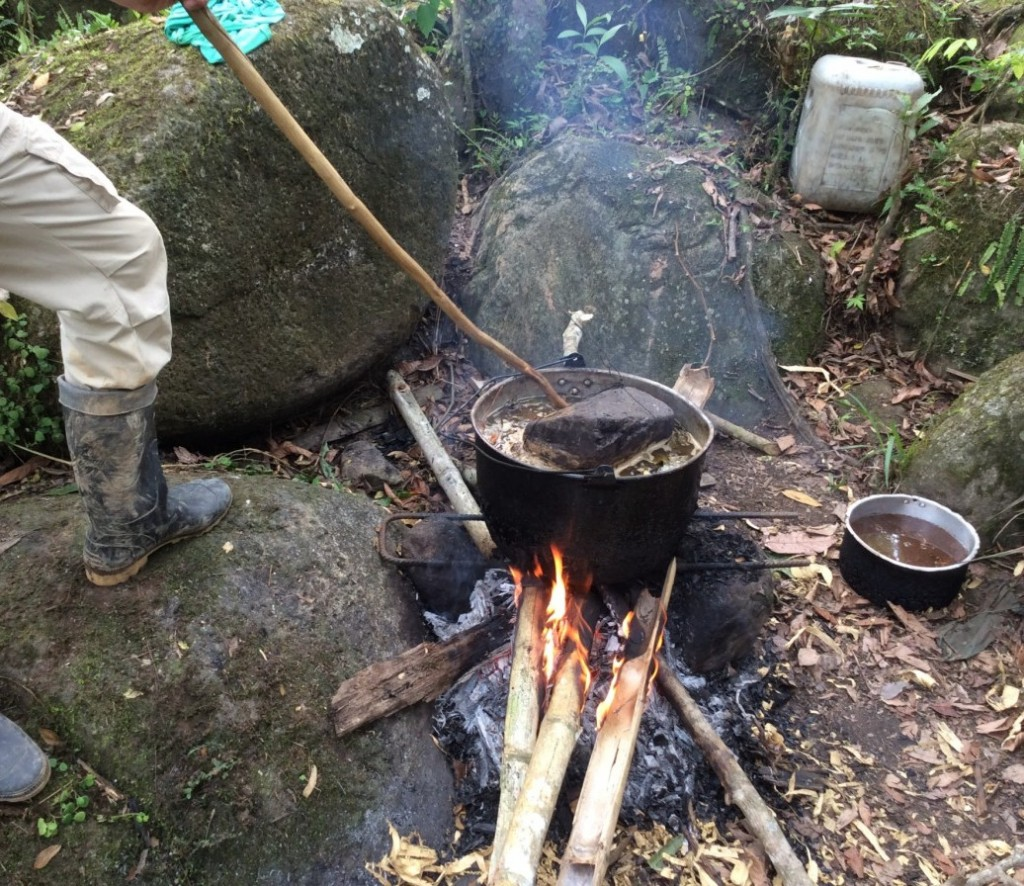 Cooking ayahuasca, the sacred brew.